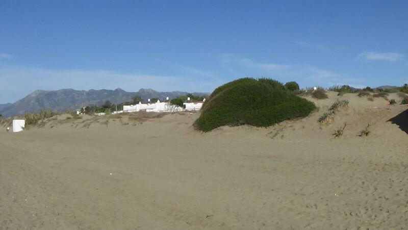 Playa Real Zaragoza Marbella