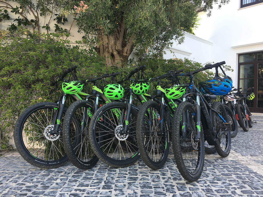 Bicicleta eléctrica alta gama